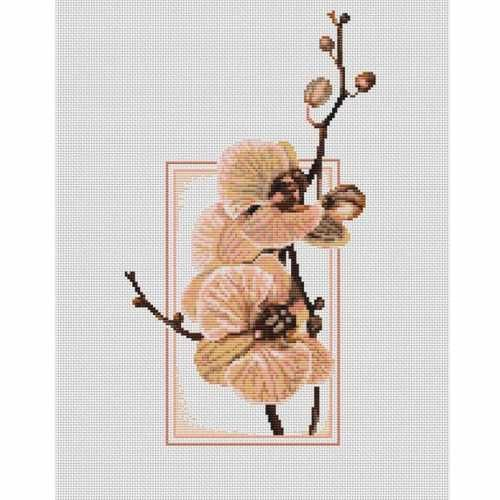 Вышивание крестиком-орхидеи