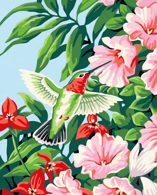 Дню рождения, райская птичка открытка