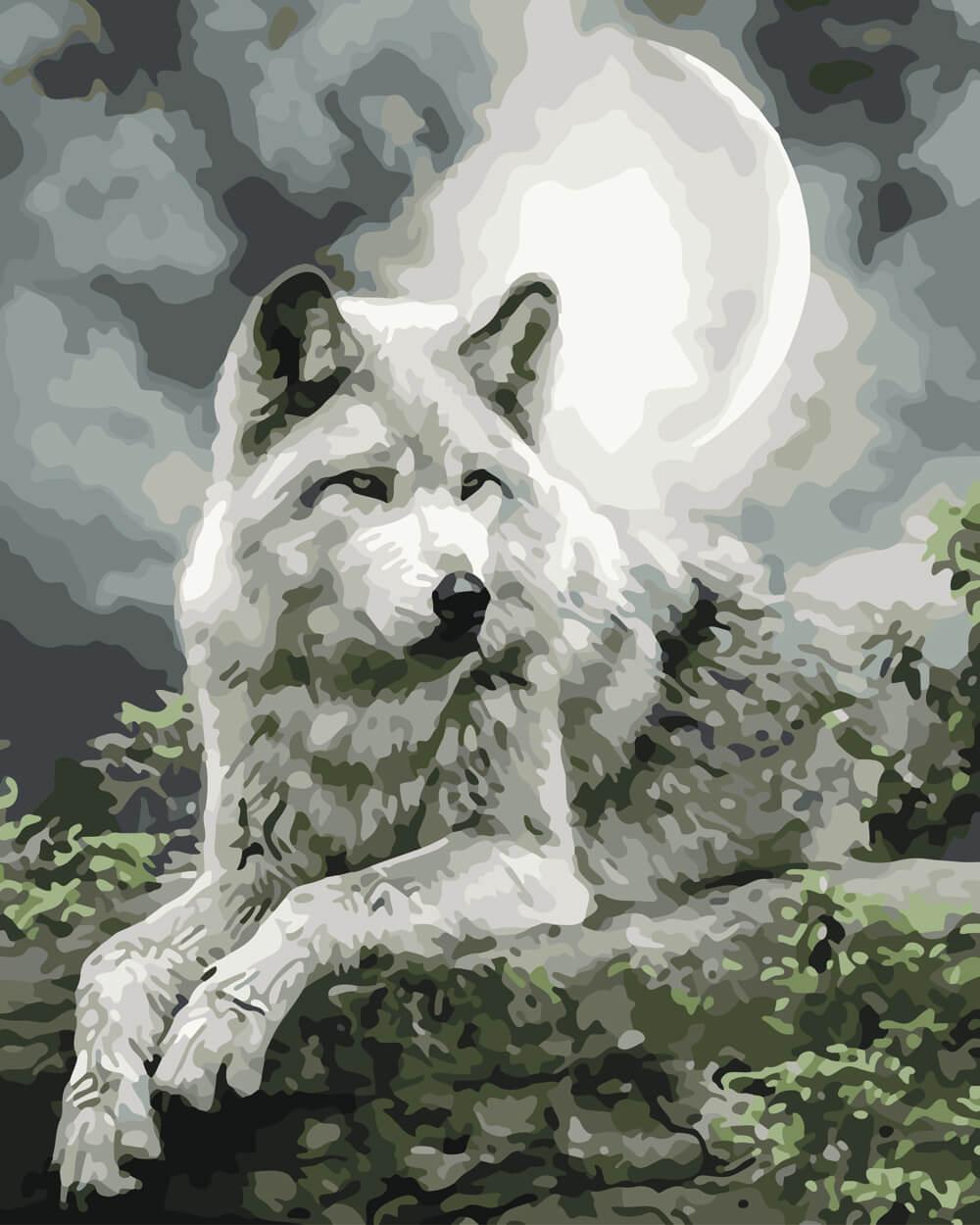 Красивые волки картинки с надписями