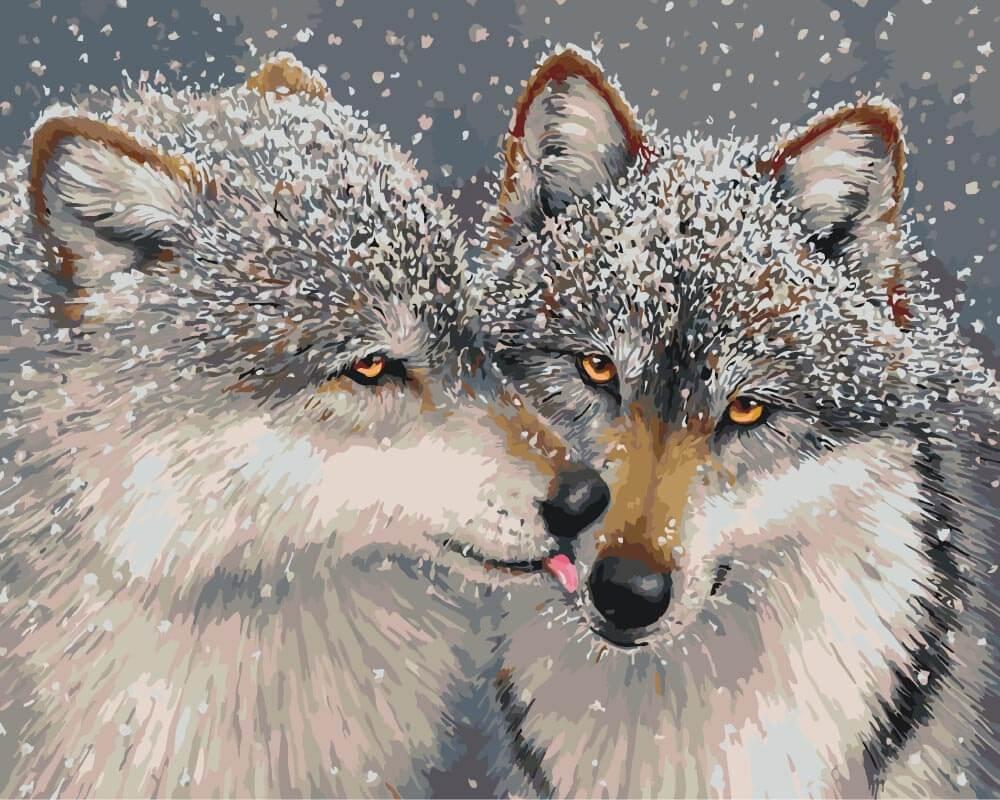 Юбилеем, картинки с волчицей красивые